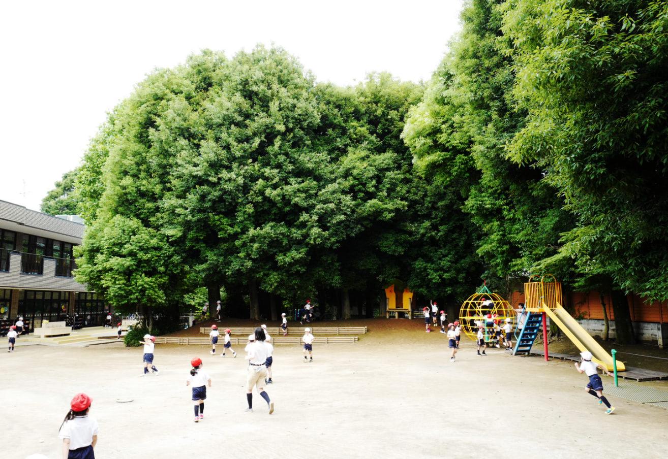園についての画像01